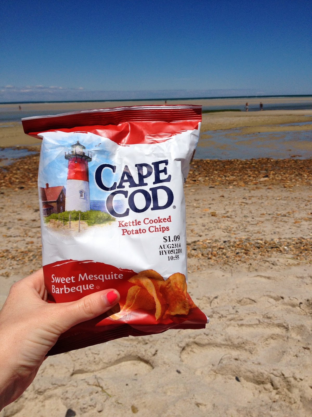 Cape Cod Food Fashion