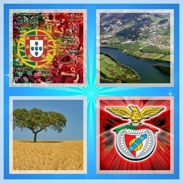 Gosto da nossa Selecção e do meu Benfica !
