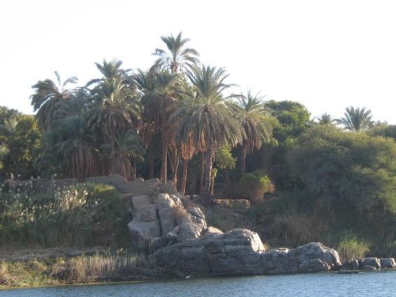 Beautiful-Nile-River-Side-Cruise-Egypt-2008-Sealiberty-Cruising