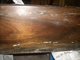 mold, fungi, wood mold, mould at the finishing