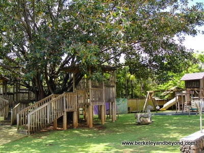 treehouse at Na Aina Kai Botanical Gardens in Kilauea, Kauai, Hawaii