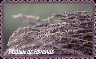 http://plaisir-de-lavande.blogspot.com/