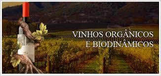 Diferenças entre Vinhos orgânicos e biodinâmicos