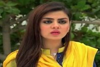 Raja Indar Episode 65 on Ary Zindagi in High Quality 25th August 2015