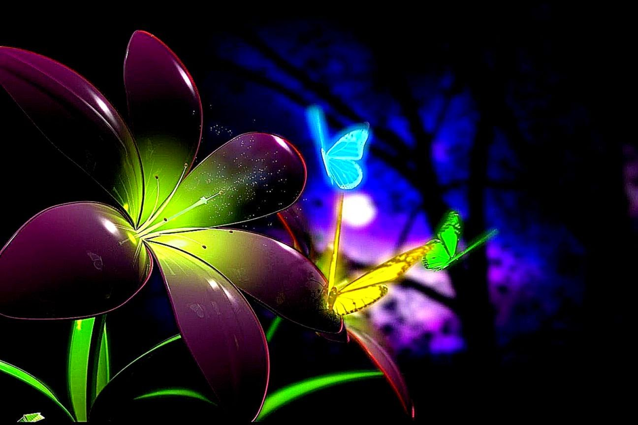 Beautiful Butterfly Colorful Desktop Hd Wallpaper | Best ...