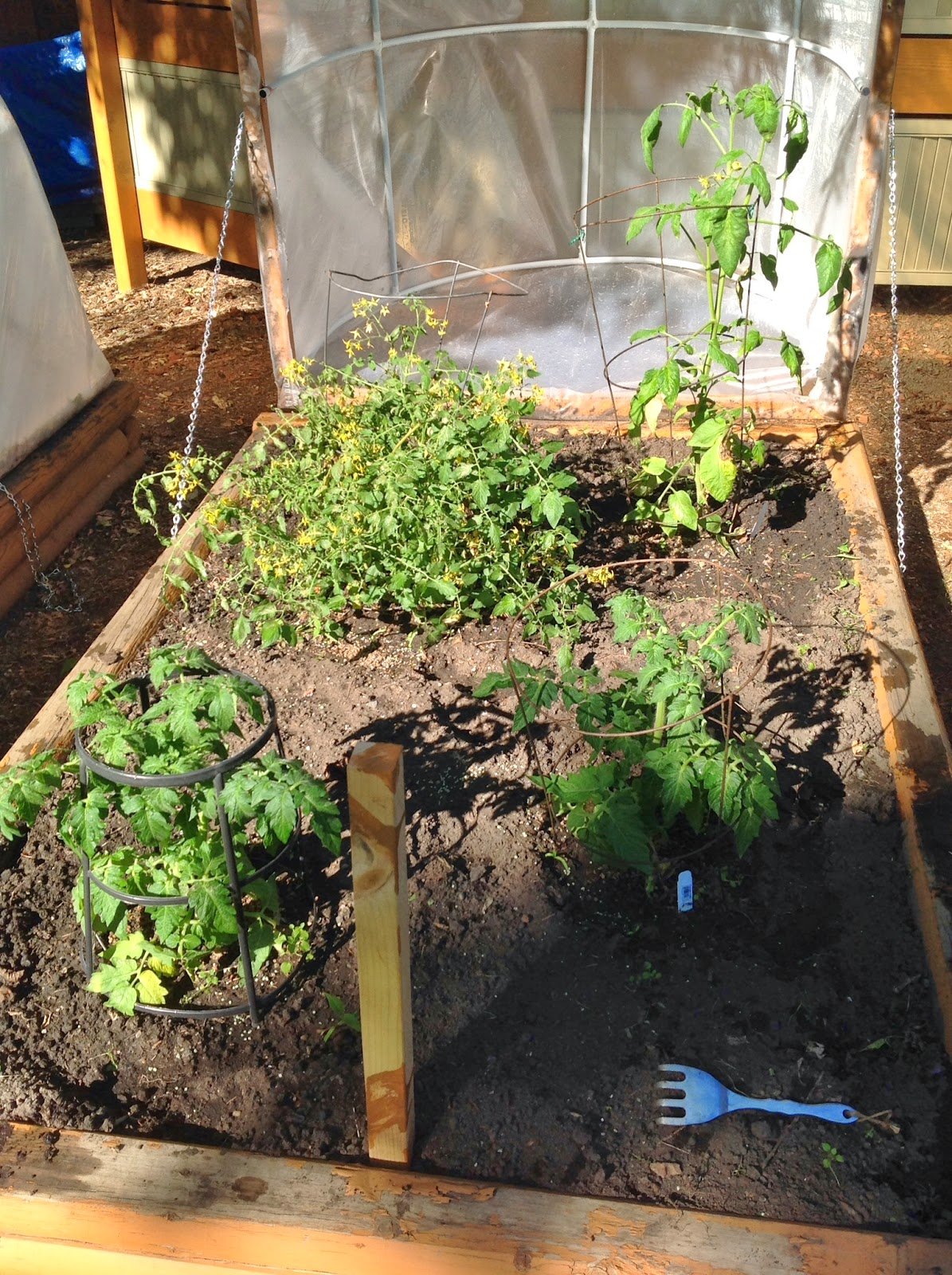 diy greenhouses for raised garden beds | the interior frugalista