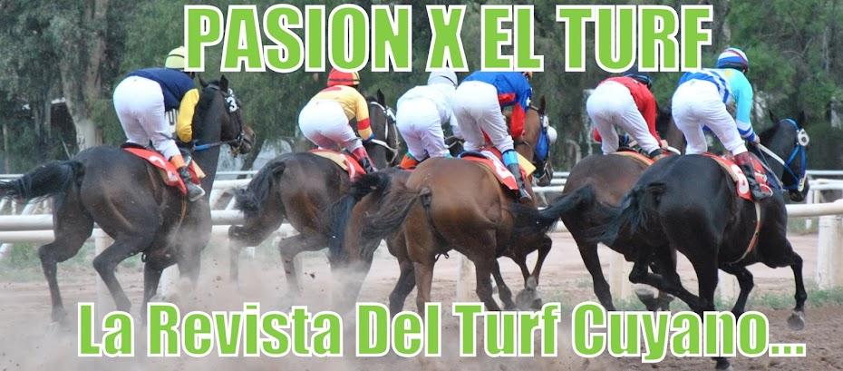Revista Pasion X El Turf