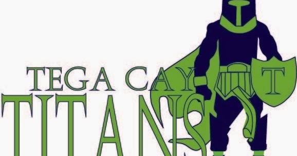 Digital Art & Design: Tega Cay School Mascot Designs