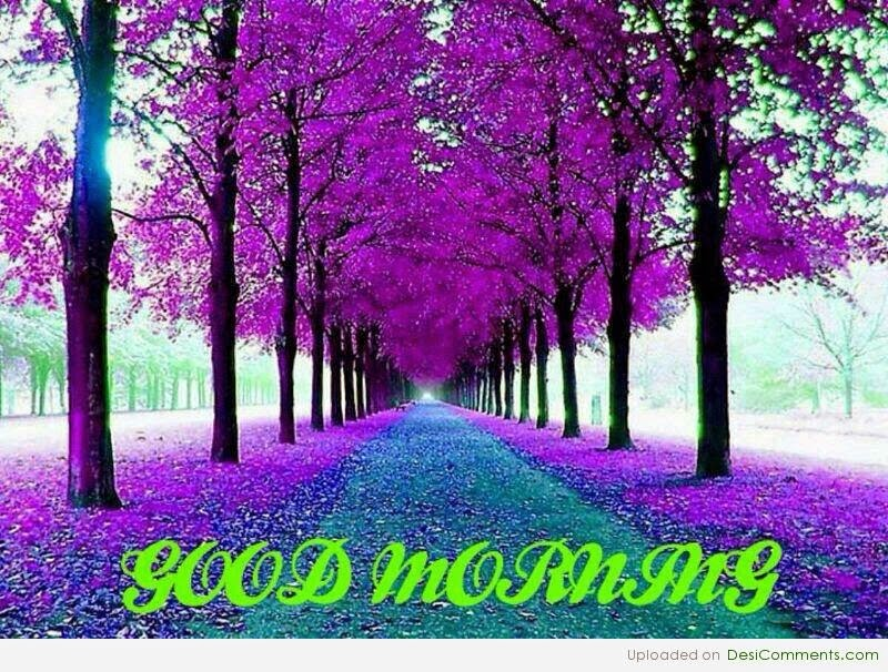 Purple Flower Wishes Good Morning Wallpaper With Message ...