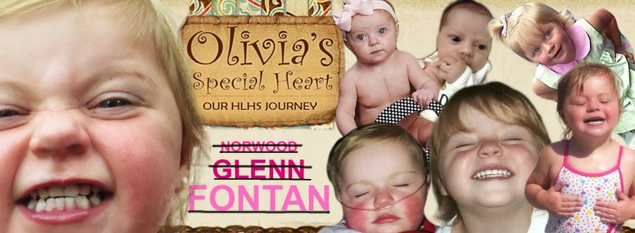 Olivia's Special Heart: Our HLHS Journey
