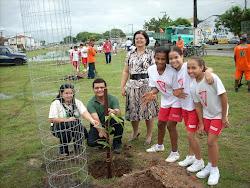 Reflorestamento Urbano na Avenida Maranhão