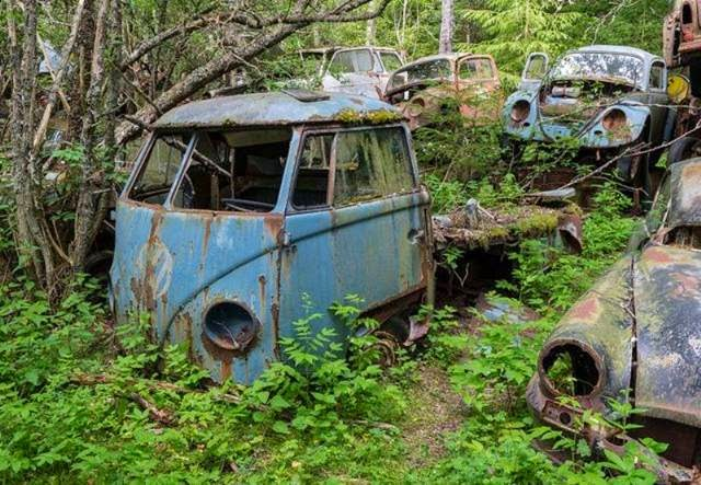 Explore the ghostly Swedish junkyard of 1,000 cars abandoned by Americans