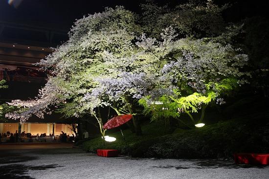 Sophie le berre plantes du japon histoire botanique et for Jardin iwaki