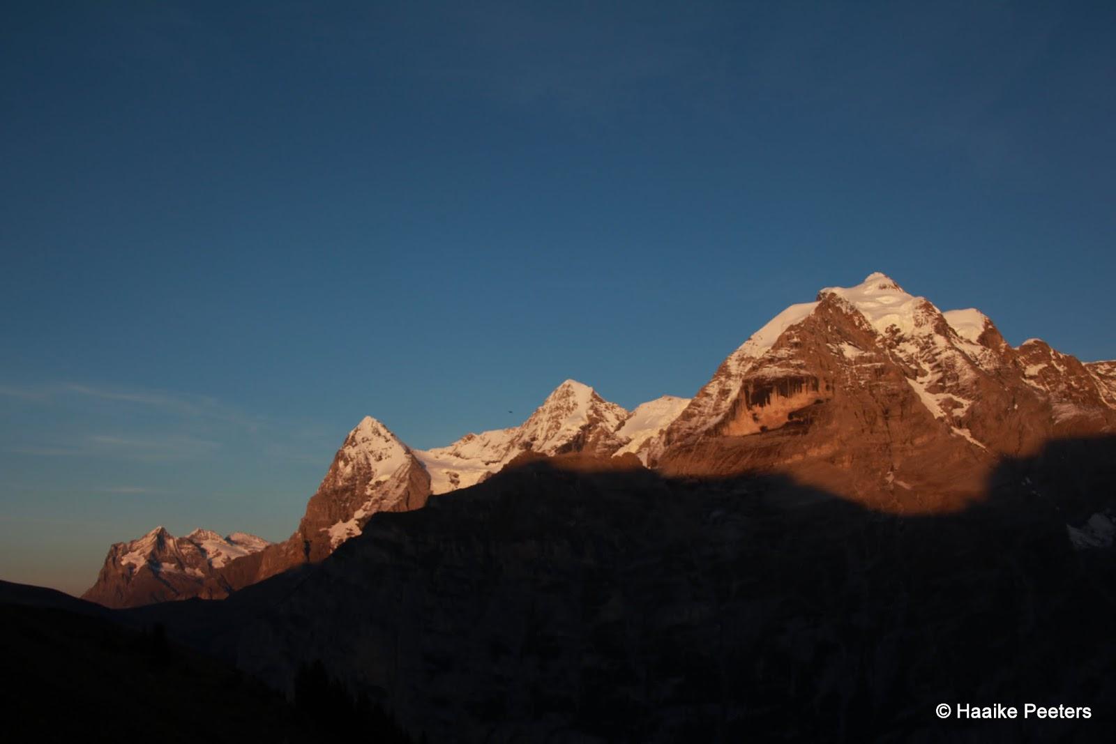 Eiger, Mönch, Jungfrau (Le petit requin)