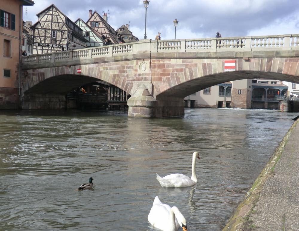petite france estrasburgo
