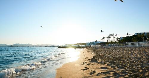 Best Beach Wedding Locations San Diego