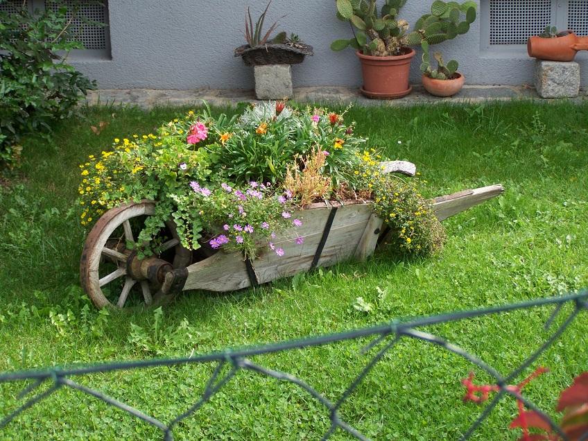 lebenstage waldvierteltage ber den zaun geschaut. Black Bedroom Furniture Sets. Home Design Ideas