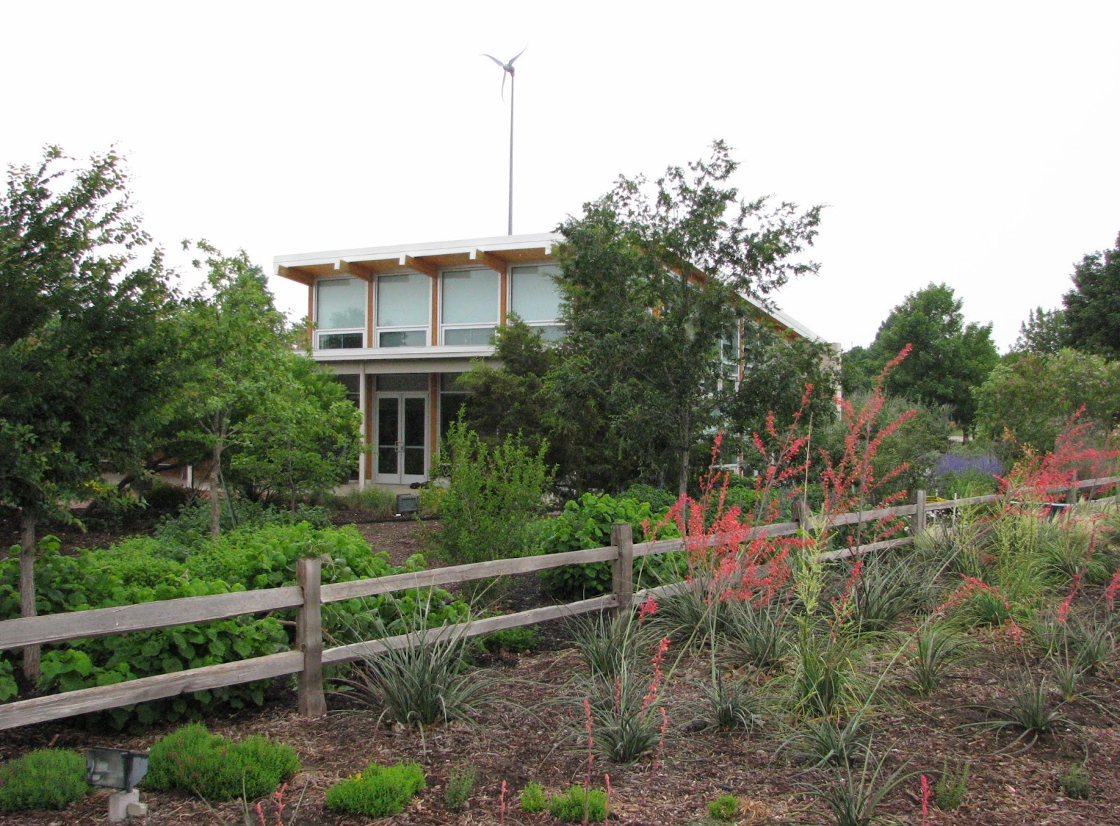 Plano Prairie Garden Plano Water Wise Landscape Tour Drive Bys