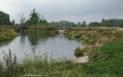 http://fotobabij.blogspot.com/2015/10/tanew-wysokie-brzegi-wczesna-jesienia.html