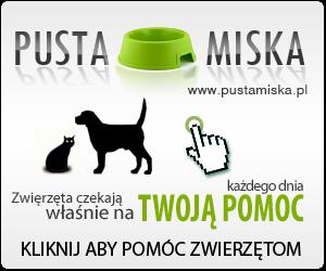 PUSTA MISKA