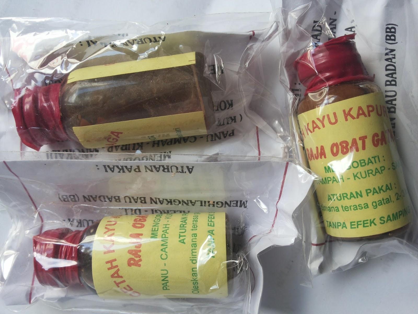 ramuan mujarab suku dayak ramuan getah kapur naga raja