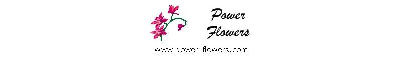 Toronto Florist - Power Flowers