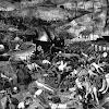 Black Death and the Peasants' Revolt