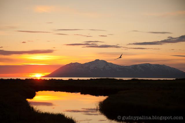 sunset, guðný pálína sæmundsdóttir