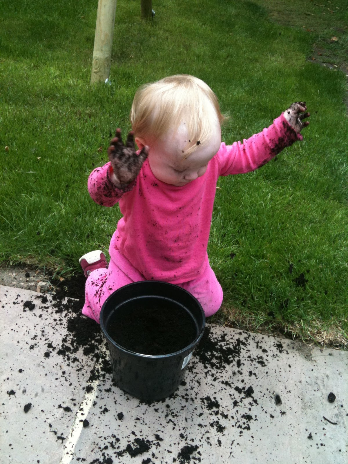 u-ni-k blog: #NGW - our favourite gardening tips!