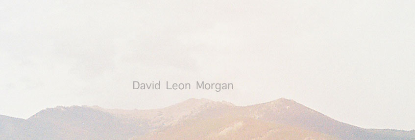 David Leon Morgan