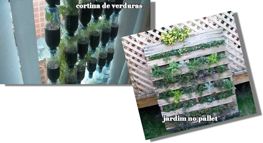 ideias baratas para jardim vertical : ideias baratas para jardim vertical: Decoração: Horta e jardim vertical: idéias baratas e reciclávies