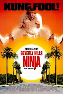 Um Ninja da Pesada – Dublado