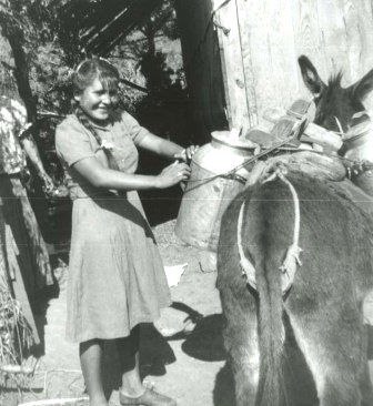 girl with donkey and water jugs the walter sanchez collection