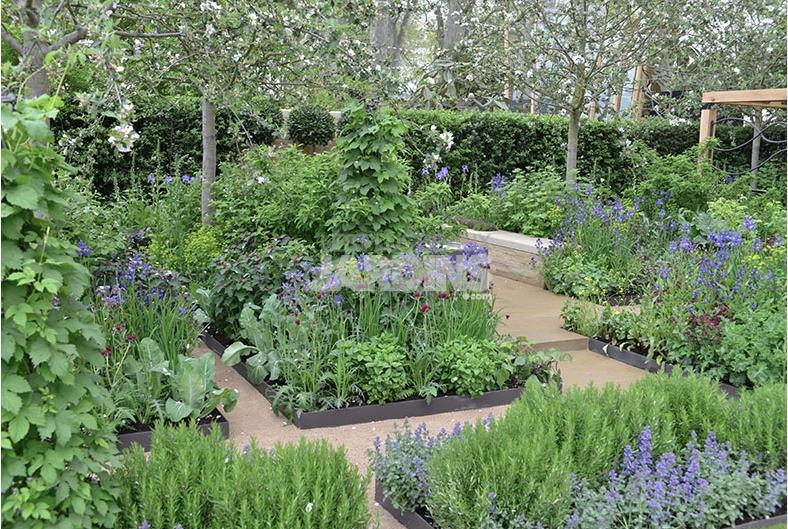 Un jardin contemporain qui aime le bleu for Les plus beaux jardins anglais