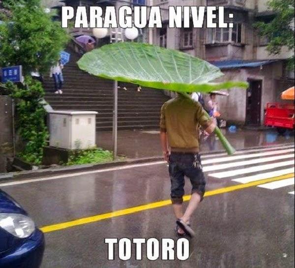Paraguas nivel Totoro