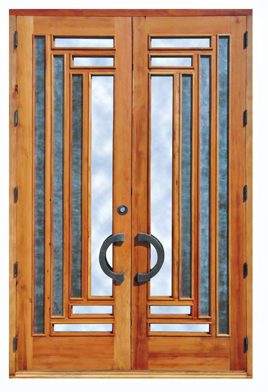 Modern homes modern doors designs ideas new home designs for Door design steel