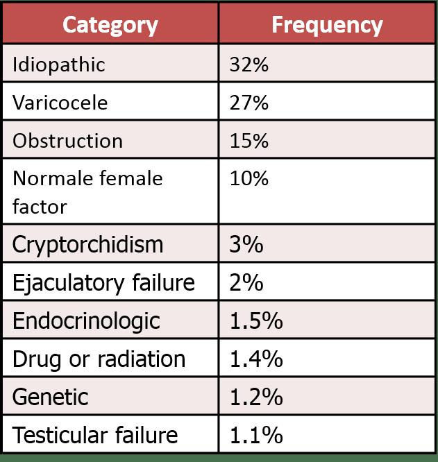 Brady Urology at Johns Hopkins Hospital: Varicocele: