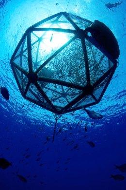 22 Penemuan Terbaik Tahun 2012: Drifting Fish Farm