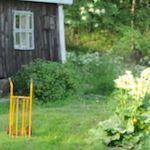 Osallistun avoimiin puutarhoihin
