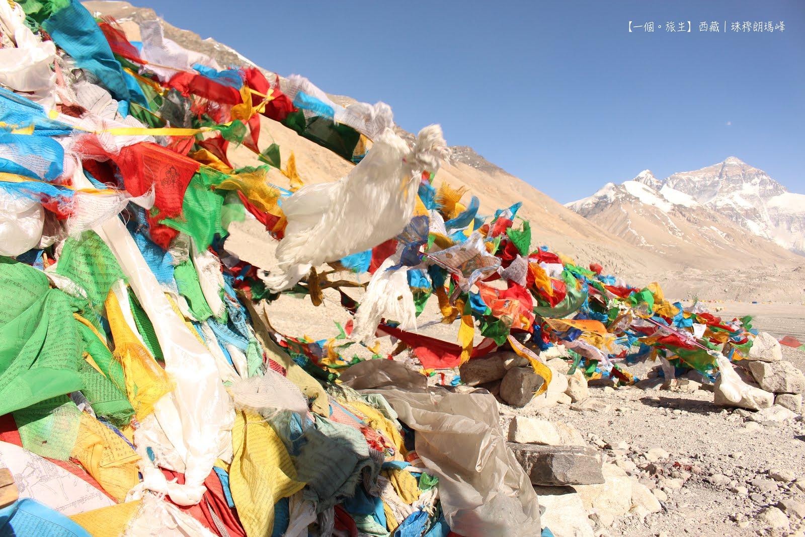 珠穆朗瑪峰(西藏)