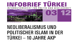 Infobrief Türkei 03/2012