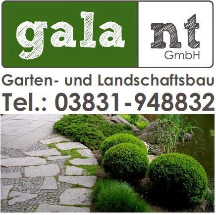 Logo galant GmbH Stralsund
