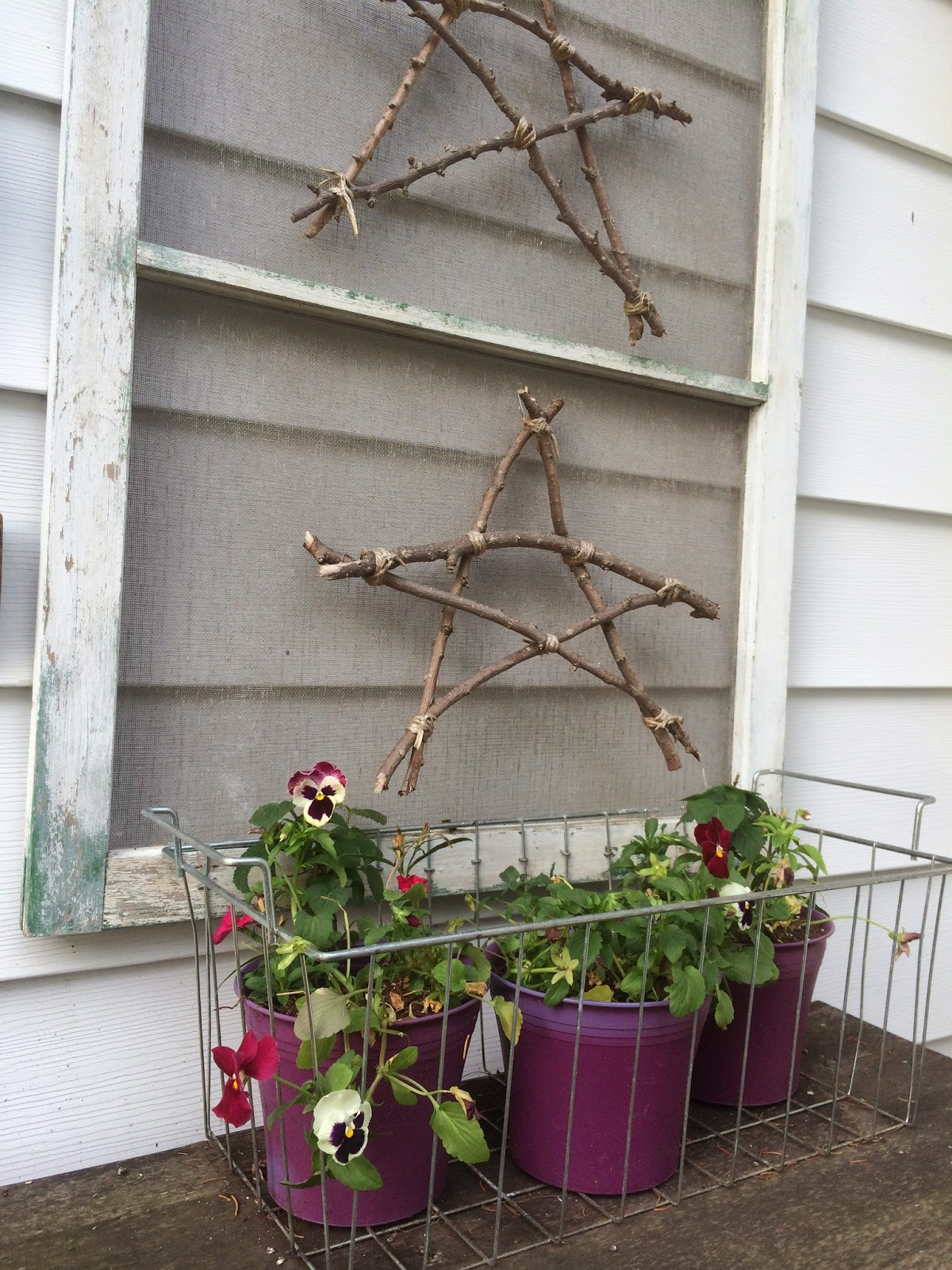 Twig Stars and Potted Pansies