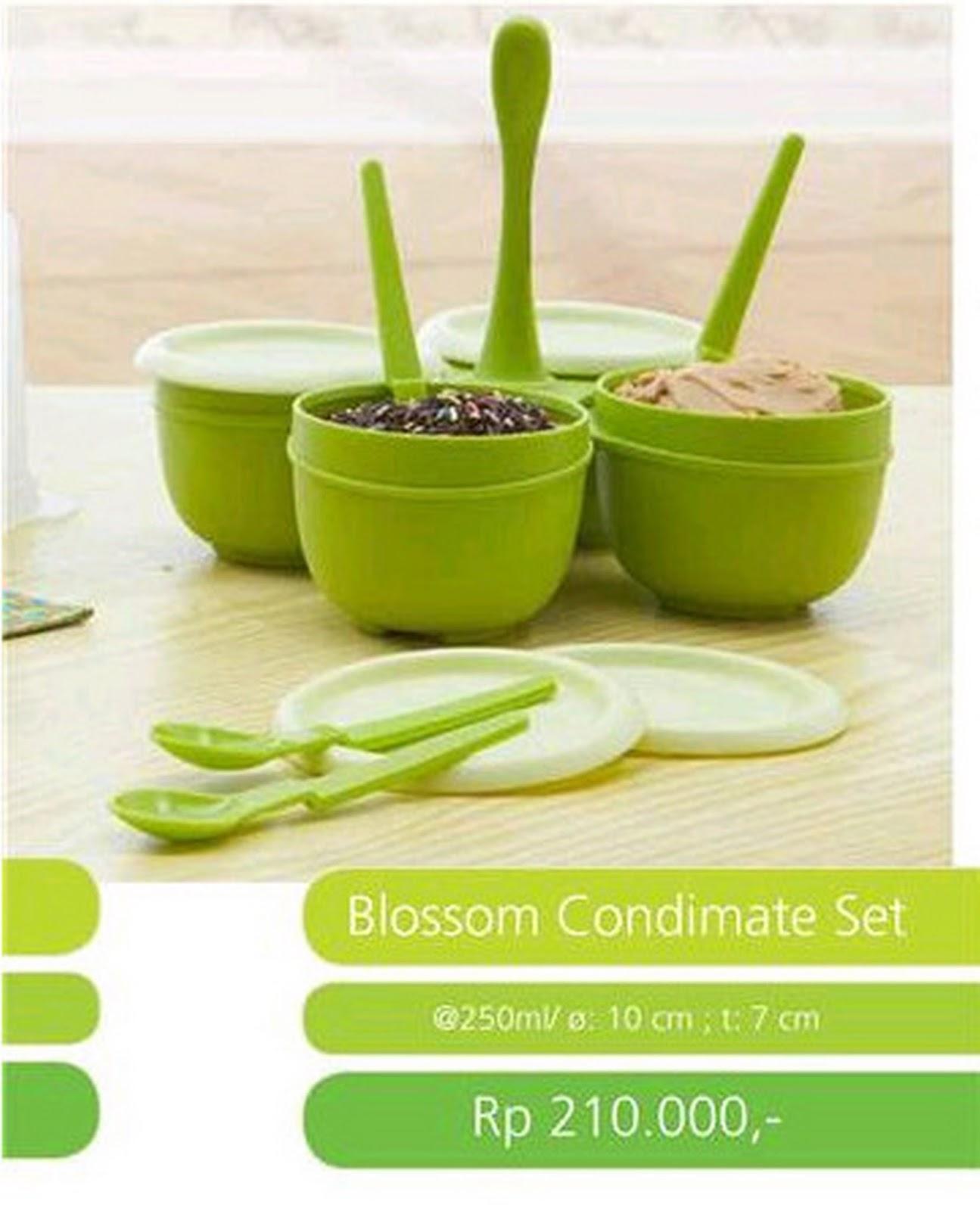 Tupperware Promo Blossom Condimate Set