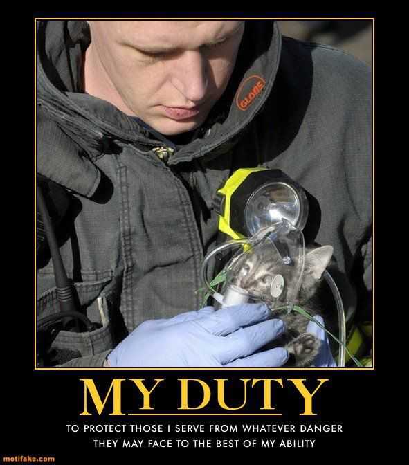 International Firefighters    DayFunny Hot Firefighter Pictures