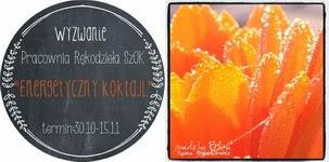 http://pracowniarekodzielaszok.blogspot.com/2014/10/wyzwanie-12-energetyczny-koktajl.html