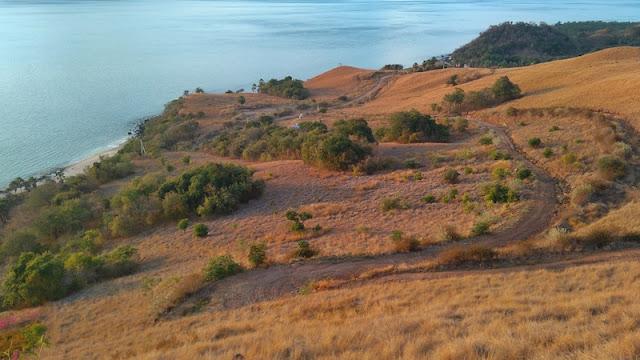"<a href=""http://mataram.info/things-to-do-in-bali/visitindonesia-banda-marine-life-the-paradise-of-diving-topographic-point-inward-fundamental-maluku/"">Indonesia</a>best destinations : Move Alongside Xperia M4aqua"