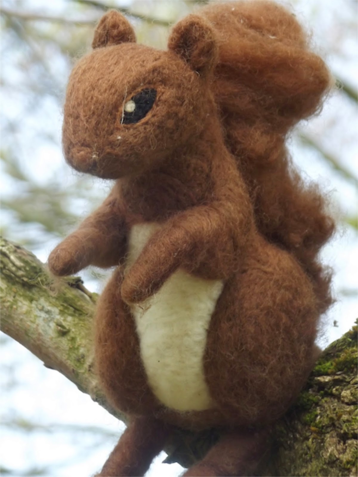 Woollen Woods squirrel