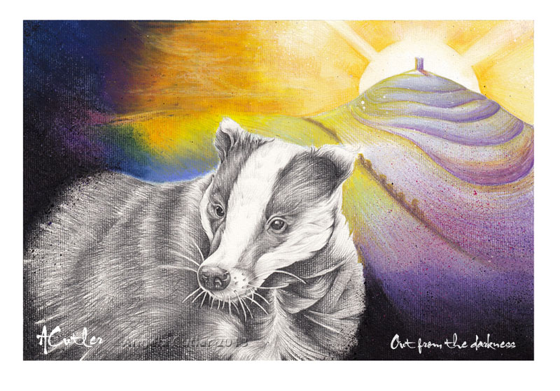 Out from the Darkness - Badger Glastonbury drawing