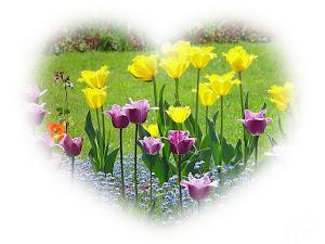 amo flores!!!